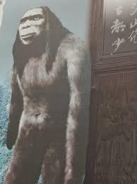 chinese wildman yeren
