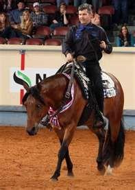 401fc80de0c8 harley d zip - my inspirational horse