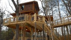 Choose treehouse cabins for a stay that you'll always remember. This Vrbo guide has destination inspiration aplenty, from California to Georgia. Treehouse Cabins, Treehouses, Treehouse Ideas, Oklahoma Cabins, Cabins In The Smokies, Big Deck, Hanging Beds, Cool Tree Houses, Hotel Stay