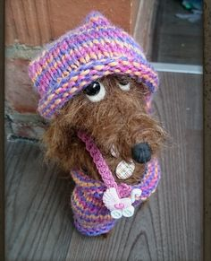Teddie dachshund A wire-haired dachshund teddy от Cosydachshund