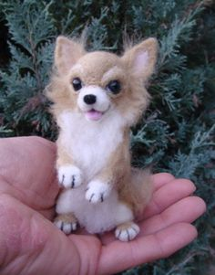 Needle felted Chihuahua--such a cute face!