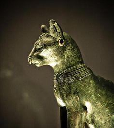 Il gatto nell'arte: quando i gatti venivano perseguitati e gettati dai campanili
