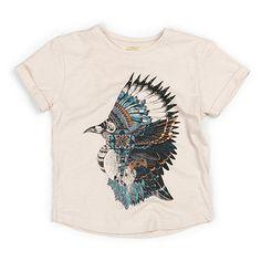 put a native-american-bird on it?