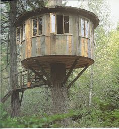 Treehouses by Pete Nelson Interview with Pete Nelson of Animal Planet's Treehouse Masters Treehouse Masters, Trailer Casa, Glamping, Building A Treehouse, Cool Tree Houses, Tree House Designs, Trendy Tree, Tree Tops, In The Tree