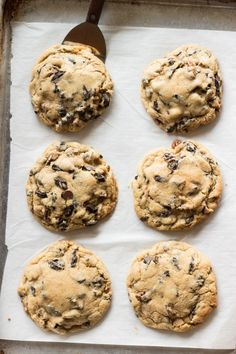 Big Fat Chocolate Chip Cookies   The Cook's Treat