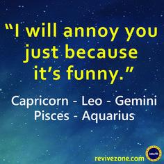 funny, annoying, zodiac signs, gemini, leo, capricorn, aquarius, pisces Zodiac Signs Aquarius, Horoscope Signs Leo, Funny Zodiac Signs, Zodiac Sign Facts, Zodiac Horoscope, Zodiac Quotes, Horoscope Funny, My Zodiac Sign, Zodiac Signs Capricorn
