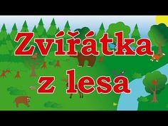 Zvířátka z lesa - animované zvuky zvířat pro děti a nejmenší - zvuky zvířat v lese - YouTube