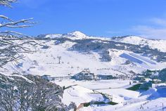 A place you could sprain both your elbow and chin Perisher, NSW, Australia Oh The Places You'll Go, Places Ive Been, Snowy Mountains, Snow Skiing, Australia Living, Nice View, Wonders Of The World, Surfing, National Parks