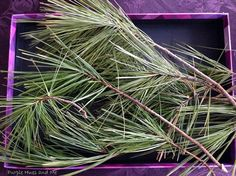 Homemade Pine Needle Facial Toner - Before you throw that real pine Christmas tree out or dismantle those lovely natural pine wreaths and garlands you put toget…