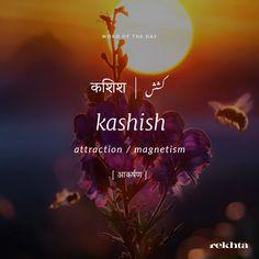 The Words, Weird Words, Cool Words, Urdu Words With Meaning, Hindi Words, Urdu Love Words, Word Meaning, Intp, Poetic Words