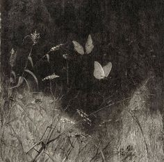 Butterflies by William Baxter Closson, ca. 1887 (Detail) Aesthetic Photo, Aesthetic Pictures, Butterfly Art, Butterflies, Twitter Header Photos, Black And White Aesthetic, Disney Sketches, Dark Wallpaper, Dark Photography