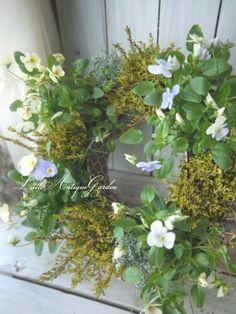 ビオラのリース #シャビー#アンティーク#寄せ植え#シック#antique#garden#shabby