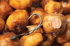 Get the big 'G' out of your tigers nuts! - Articles - CARPology Magazine