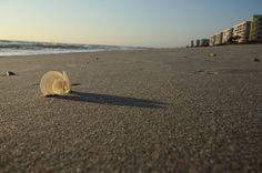Sunshine Luminary - - Indian Harbour Beach, FL