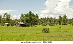 "Find ""apache-sitgreaves national forest"" stock images in HD and millions of other royalty-free stock photos, illustrations and vectors in the Shutterstock collection. Thousands of new, high-quality pictures added every day. Forest Mountain, National Forest, Arizona, Golf Courses, Royalty Free Stock Photos, Mountains, Illustration, Pictures, Outdoor"