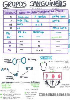 Tabela Periódica (Parte I) Medicine Notes, Mental Map, Study Hard, Studyblr, Study Notes, Study Motivation, Student Life, Science Education, Study Tips