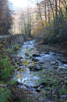 A peaceful setting in the Great Smoky Mountains.