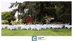 Summer wedding at Wilmes Hop Farm in St. Photography by Charlene Vogel Photography Willamette Valley, Event Venues, Farms, Summer Wedding, Oregon, Reception, Table Decorations, Photography, Homesteads