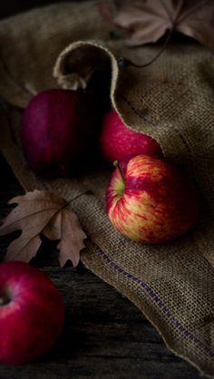 Fall Apples Photo Still Life Still Life Photography, Food Photography, Apples Photography, Almond Paste Cookies, Apple Cake, Fall Season, Apple Season, Harvest Season, Belle Photo