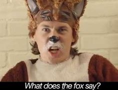 Dress up as the foxy Ylvis brothers