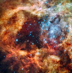 """Warum Sternhaufen nicht """"explodieren"""": Junge Sterne heizen das Gas in Haufen sehr stark auf, doch die Eigengravitation behält die Oberhand. // Hubble-Aufnahme von R136 in repräsentativen Farben – Blau ist das Licht von den heißesten und schwersten Sternen, Grün stammt von glühendem Sauerstoff und Rot von fluoreszierendem Wasserstoff. (Bild: NASA / ESA / F. Paresce, INAF-IASF / R. O'Connell, U. Virginia)"""