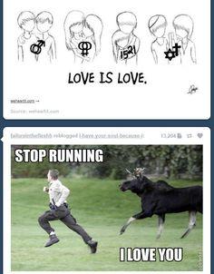 stop runnin' i love you!