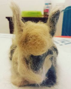 We decided to furminate our many pets as they are starting to shed their winter coats. In doing so they lost so much fur that we were able to make another pet...meet #toupee bunny! Made from none other than semi-felted (ie bunched and rolled together) pet fur.  #leapyear #leapday #bunny #bunnies #bunniesofinstagram #felting #petstagram #petfun #petfur #furminator #toomanypets #shedding #petsrule #trump #makedonalddrumpfagain #fur #animalfur