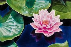 Oil Pastels Featured Images - Water Lily  by Brian Broadway