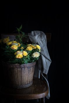 Improving Your Photography – Tips To Get Better Pictures! Dark Food Photography, Still Life Photography, All Flowers, Yellow Flowers, Foto Still Life, Still Life Images, Ivy House, Arte Floral, Photos Of The Week