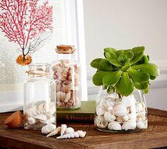 Shells In A Bottle Vase Filler #potterybarn