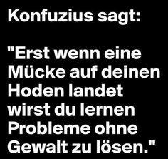 Wenn eine Mücke auf deinen Hoden landet stellst du fest, dass es auch einen Weg ohne Gewalt gibt, Probleme zu lösen. Wise Confucius