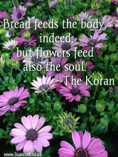 Bread feeds the body, flowers feed also the soul ~ the Koran