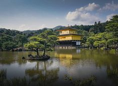 Kinkaku-ji is the most photographed temple in Japan. The Golden Pavilion stands in the north west of Kyoto. Find all information about its history here. Landscape Photography, Travel Photography, Golden Temple, Wonderful Places, Wilderness, Places Ive Been, Tours, Explore, Ponds