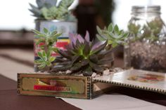 The tables will have scattered succulent arrangements in unique vintage containers and as well as mason jar votives