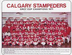 Canadian Football League, Grey Cup, Vintage Football, Argos, Calgary, Hockey, Toronto, Stamps, Retro