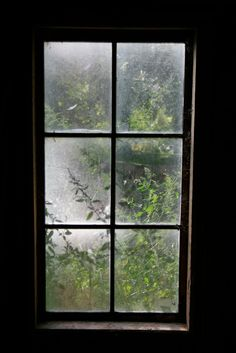 Window From Inside House