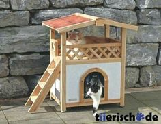 House for outdoor cats