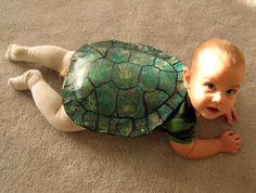 Halloween costume - baby as turtle - this is happening to my first child (and maybe any who come after that too)!
