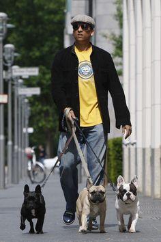 Die Partner der deutschen Stars: So lieben sie Cute French Bulldog, French Bulldog Puppies, French Bulldogs, I Love Dogs, Puppy Love, Xavier Naidoo, French Dogs, Little Puppies, Dog Walking