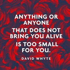 """Anything or anyone / that does not bring you alive / is too small for you."" — David Whyte"