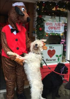 Canine wishes come true as Santa Paws visits Keswick http://www.cumbriacrack.com/wp-content/uploads/2016/12/IMG_9353.png On Sunday the 18th of December Santa Paws will be waiting to greet dogs from all over the county at his Doggy Grotto at Podgy Paws Pet Shop in Keswick.    http://www.cumbriacrack.com/2016/12/07/canine-wishes-come-true-santa-paws-visits-keswick/