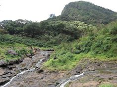 TreksAndTrails India- Monsoon Trek to Andharban  on 30 Aug 2015 http://treksandtrails.org/index.php/event-timer/282-treksandtrails-india-monsoon-trek-to-andharban-for-one-day-on-30th-august-2015?utm_content=buffer9daee&utm_medium=social&utm_source=pinterest.com&utm_campaign=buffer Ankit Savla +919821912078