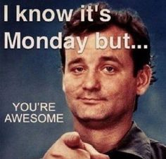 It's Monday You're Awesome quotes quote days of the week monday quotes happy monday monday humor monday morning 9gag Funny, Funny Monday Memes, Funny Drunk, Drunk Texts, Friday Memes, Happy Monday Funny, Monday Humor Quotes, Happy Today, Funny Friday