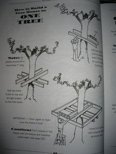 Bir ağaç evi planı nasıl