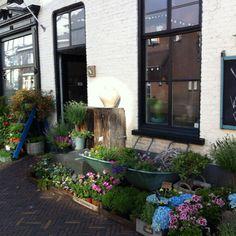 Helmi's bloemwerk heuvel13 geldrop Holland