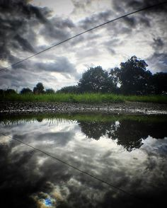 Puddle's eye view. #igworld_nature_ #folksouls #fivepicsdaily #nature_brilliance #ig_ometry #symmetry #water_brillance #reflection #water #landscape #countryside #ruralbeauty #sky #clouds #olloclip #beaniedee