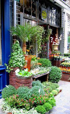 Plant Shop in Lille, France Grow Tent, Shop Fronts, Garden Shop, Little Plants, Shop Window Displays, Window Design, Vintage Shops, Exterior, Beautiful