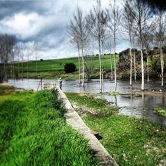 Río Gamo
