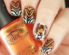 Tiger Nails using Dashica Infinity plate Tiger Nail Art, Tiger Nails, Great Nails, Love Nails, Nailart, Finger, Fancy Nails, Cute Nail Designs, Creative Nails