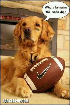 Are you ready for some Football?